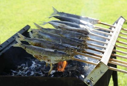 Aobosi Rauchfreier Holzkohlegrill : Steckerlfisch auf dem holzkohle grill